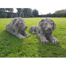 Pair of Large Laying Lions
